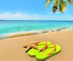 beaches, paradise, and escape image