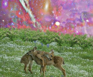 artist, deer, and space image