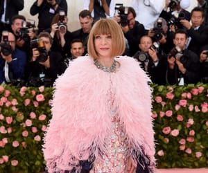 Anna Wintour, met gala, and fashion image
