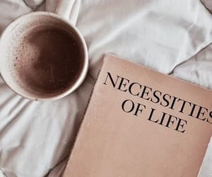 coffee, book, and brown image