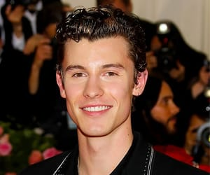 met gala and shawn mendes image
