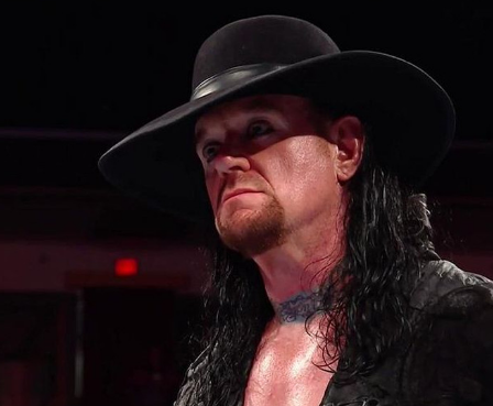 article, undertaker, and wwe image