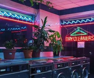 aesthetic, neon, and plants image