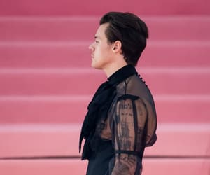 Harry Styles, met gala, and styles image