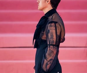 Harry Styles, met gala, and gucci image
