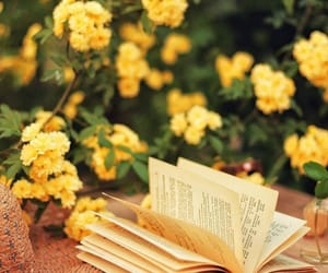 book and yellow image