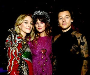 Harry Styles, met gala, and dakota johnson image