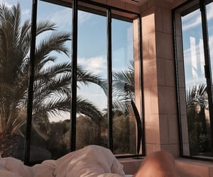 palm trees, view, and beautiful image