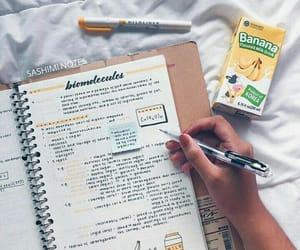 banana, motivation, and study image