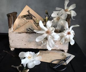 beautiful, flower, and Letter image