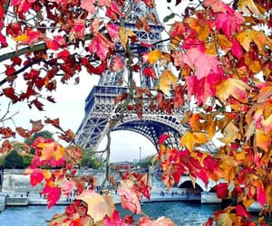 autumn, paris, and beautiful image