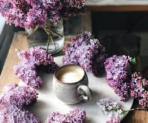 apartments, lilac, and chocolate image