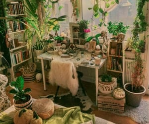 room, plants, and decor image