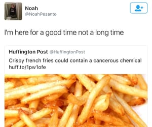 funny, meme, and food image