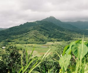 kauai, natural, and nature photography image
