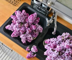 flowers, kitchen, and lilac image
