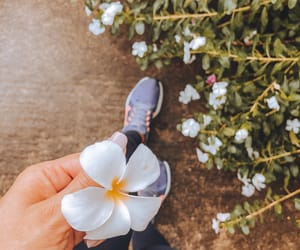 flowers, girl, and inspiration image