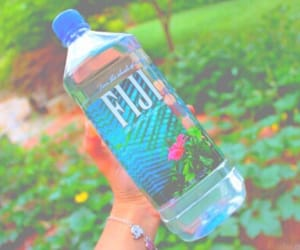 water, fiji, and tumblr image