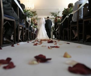 canond and weddingsong image