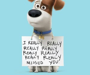 pets and the secret life of pets image