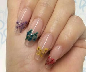 nails, flowers, and beauty image