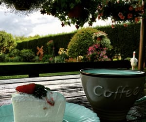 coffe, garden, and morning image