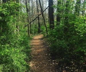 healthy, hike, and hiking image