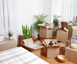 house moving services, house removal, and house removal london image