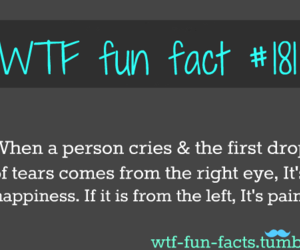 cry and fact image