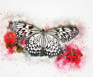 watercolor image