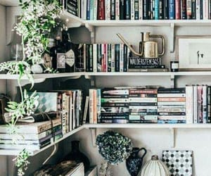 book shelf, books, and library image