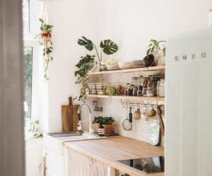 home, plants, and inspiration image