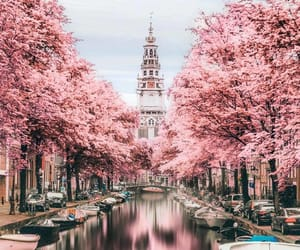 amsterdam, city, and pink image