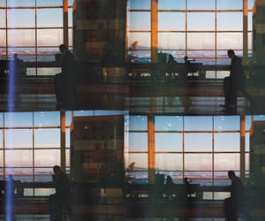 analog, film, and photography image