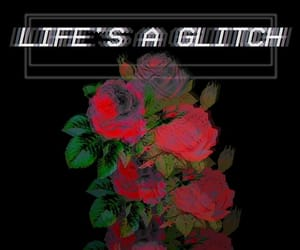 glitch, life, and roses image