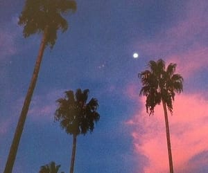 aesthetic, sunset, and vintage image