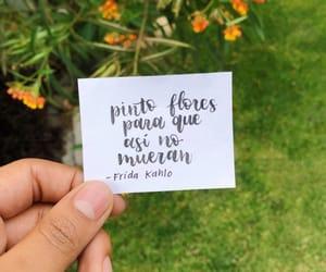 frases, frida kahlo, and lettering image