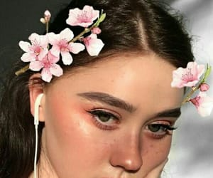 blush, flower, and peach image