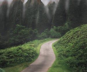 green and hawaii image