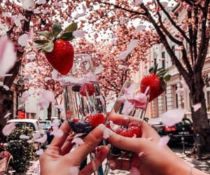 drink, spring, and flowers image