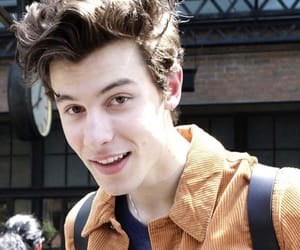 boys, nyc, and shawn mendes image