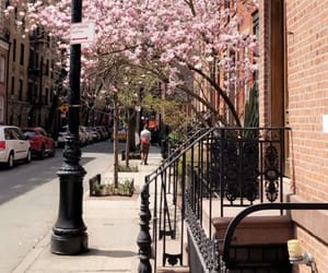 city, pink, and spring image