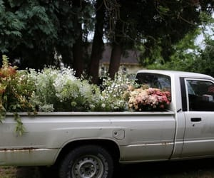 flowers, car, and indie image