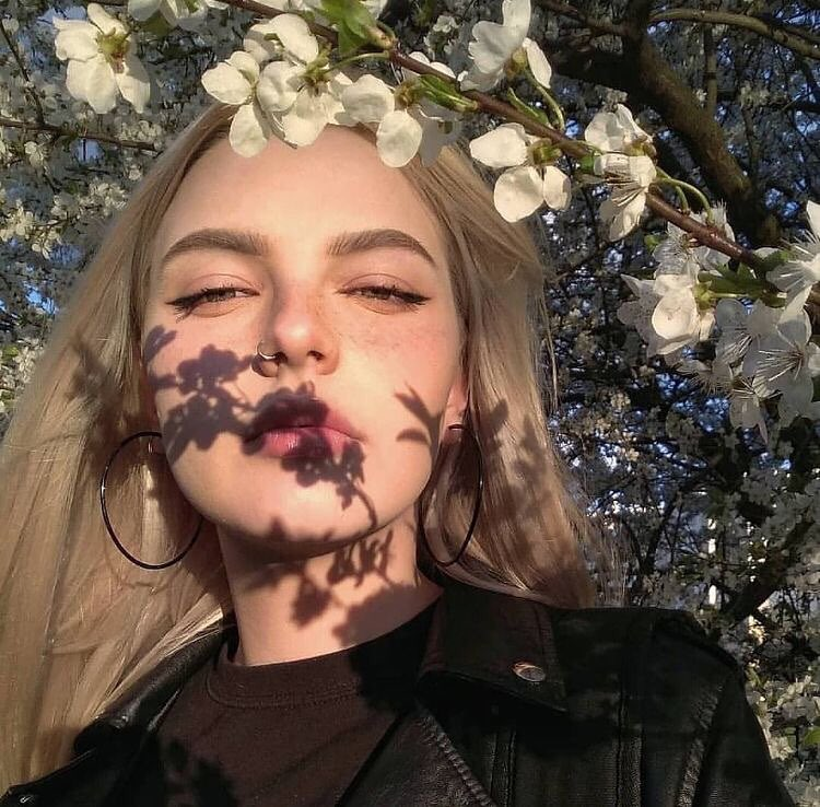 article, playlist, and spring image