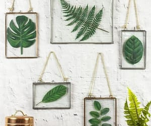 decor, wallhanging, and pinterest image