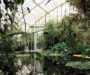 garden, green, and greenhouse image