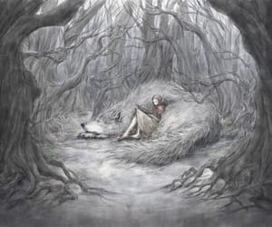 fairy tale, illustration, and little red riding hood image