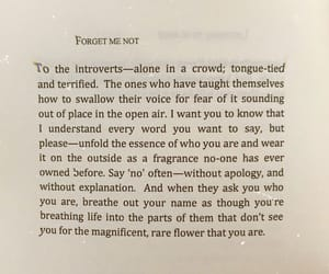 book, introvert, and life image