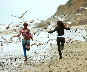 girl, birds, and friends image