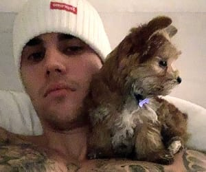 beanie, JB, and oscar image